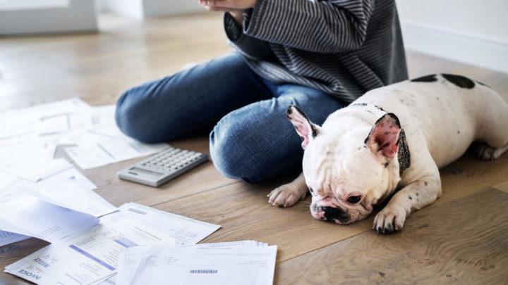 Simular empréstimo: 4 Motivos para simular empréstimo na internet